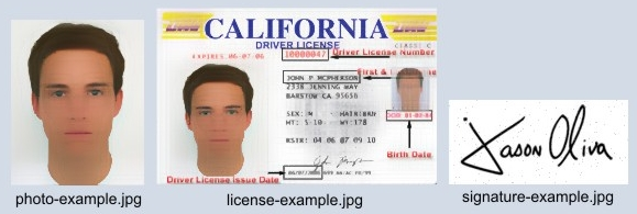 triple a international drivers license application